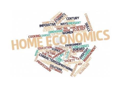 Leaving Cert Home Economics 2013